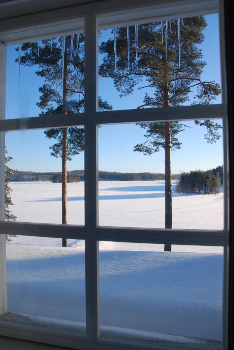a view from the upstairs window to the lake.