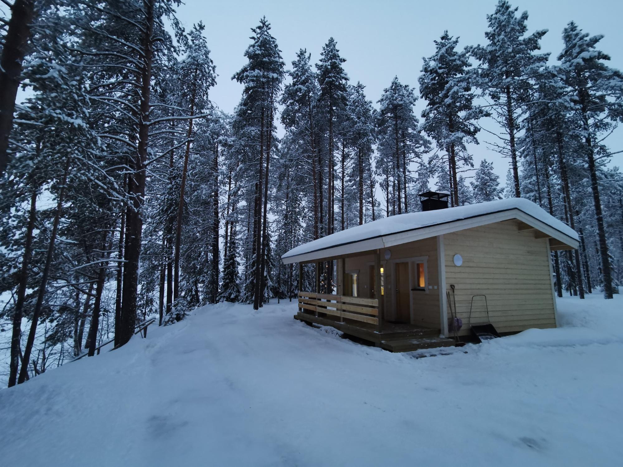 Cottage D-001 / OLLILA