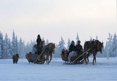 Sleigh ride (winter)