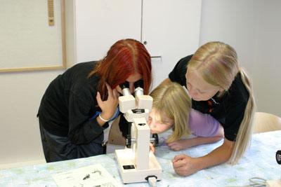 Nature Laboratory (all year round)