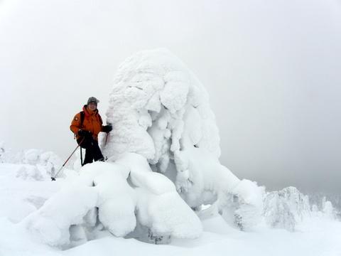 Talvinen luontoleirikoulu (teemaleirikoulu talvella)